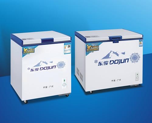 BD-301D冷冻柜